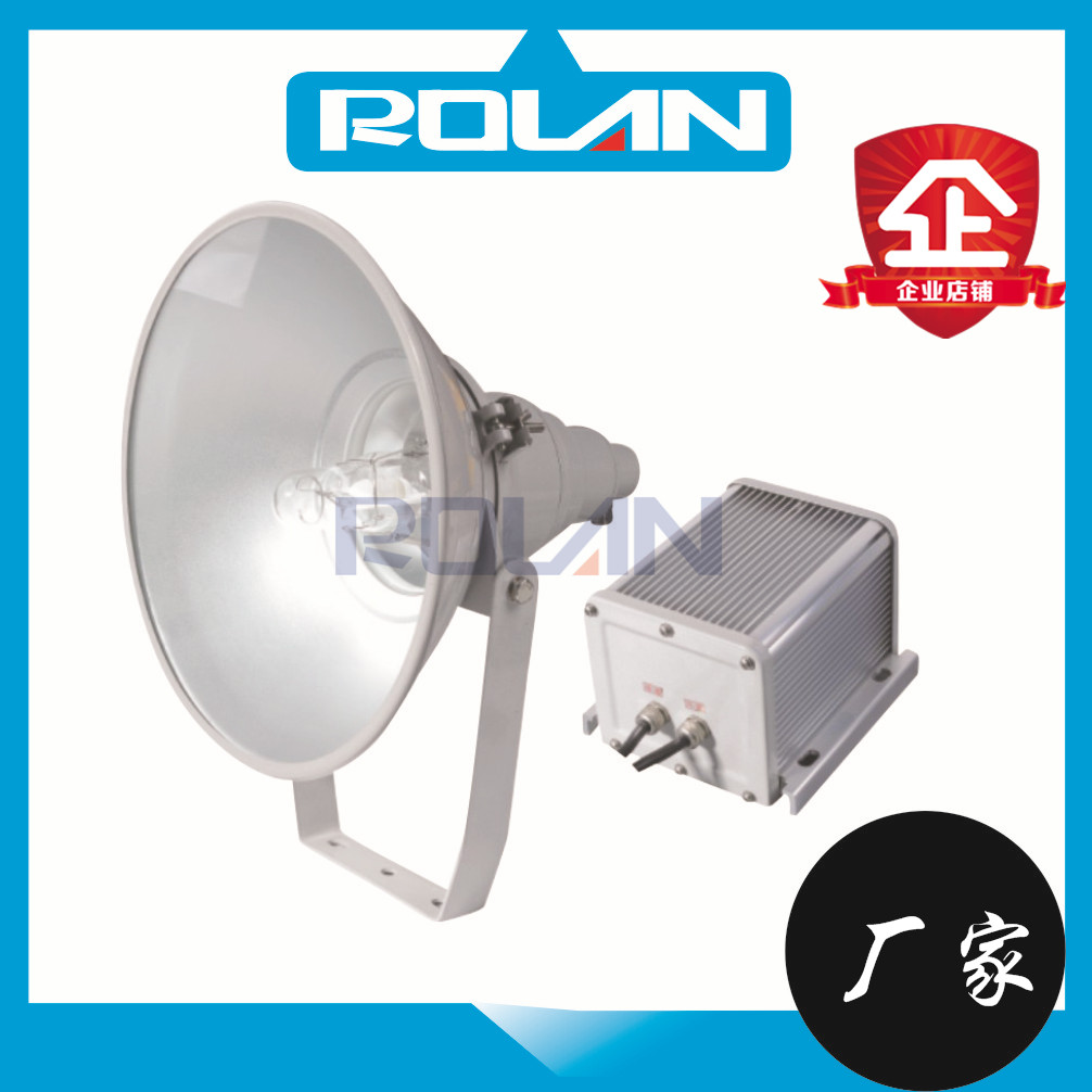 GT101防水防尘防震投光灯250W 400W